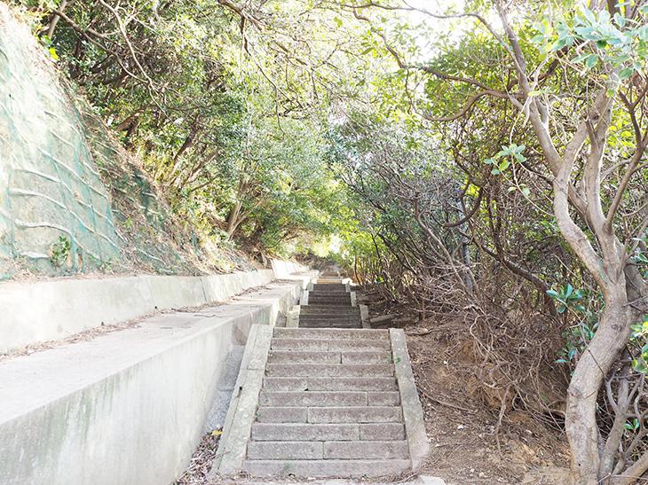 頂上への道