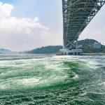 世界最大の渦潮を求め、1時間の船旅へGO!!/うずしおクルーズ(兵庫県南あわじ市)