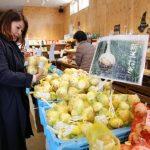 淡路島の美味しいがたくさん!新鮮な農産物・海産物ならここにおまかせ/福良マルシェ(兵庫県南あわじ市)
