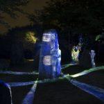 圧巻の散歩道!夜の森が光を纏う『ナイトウォーク 火の鳥』/ニジゲンノモリ(兵庫県淡路市)